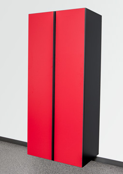 Race Day Red / Black Cabinet Option